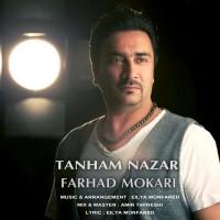 Farhad-Mokari-Tanham-Nazar