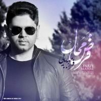 Farzad-Babaei-Farze-Mahal