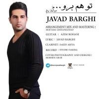 Javad-Barghi-To-Ham-Boro