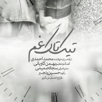 Mohammad-Ahmadi-Tik-Take-Gham