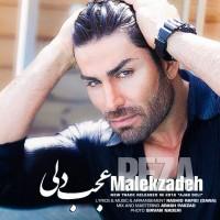 Reza-Malekzadeh-Ajab-Deli