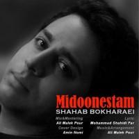 Shahab-Bokharaei-Midoonestam