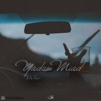 Vintner-Yadam-Miad