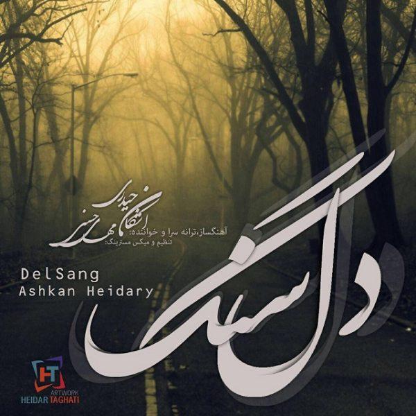 Ashkan Heidary - Delsang