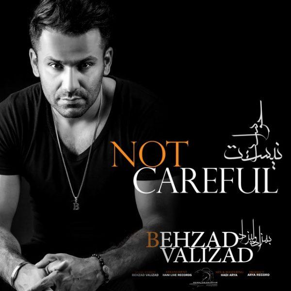 Behzad Valizad - Havaset Nist