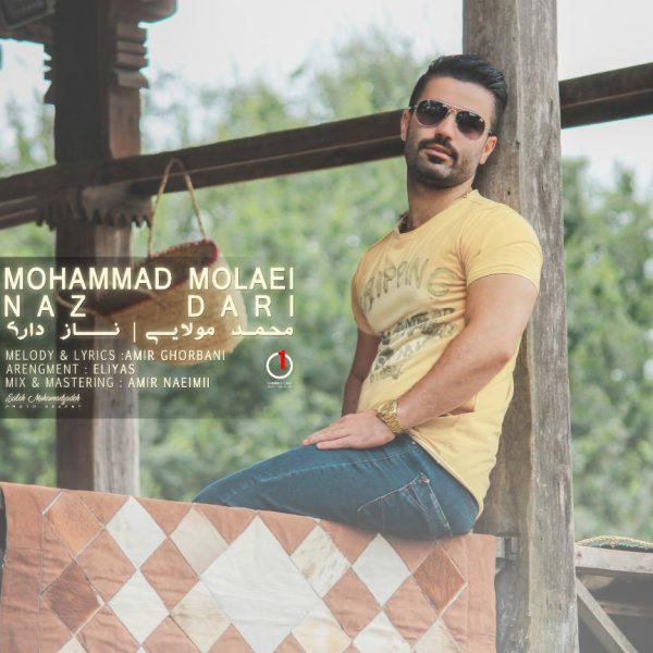 Mohammad Molaei - Naz Dari