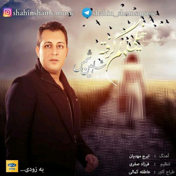 Shahin Shams - Delam Kheili Gerefte