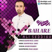 Ali-Seddigh-Bahare
