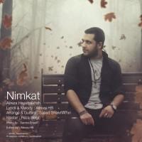 Alireza-Hayatbakhsh-Nimkat