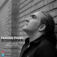 Farzad-Fazel-Bi-Gharar