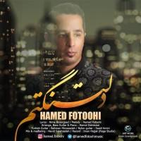 Hamed-Fotoohi-Deltangetam