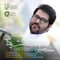 Hamed-Homayoun-Sheydaei