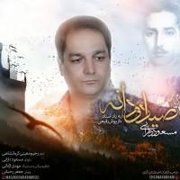 Masoud-Darabi-Sayyad-Va-Daneh