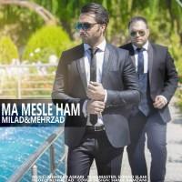 Milad-Mehrzad-Ma-Mesle-Ham