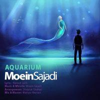 Moein-Sajadi-Aquarium