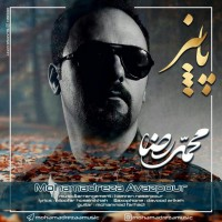 Mohamadreza-Avazpour-Paeiz