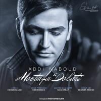 Mostafa-Dolati-Addi-Nabood