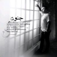Saeed-Vaghefi-Jonoon