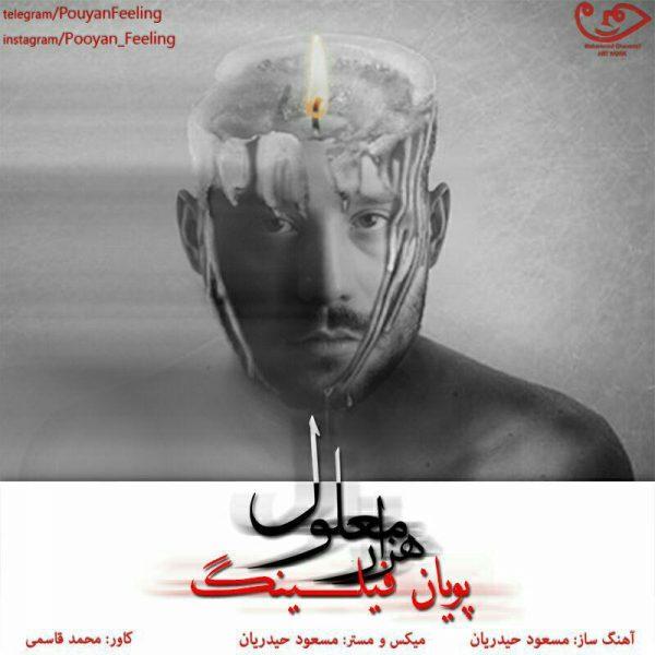 Pooyan Feeling - Hezar Malool