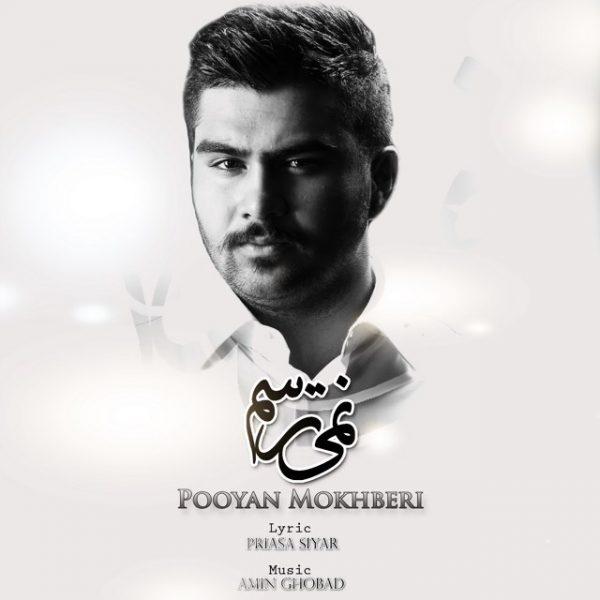 Pooyan Mokhberi - Nemitarsam