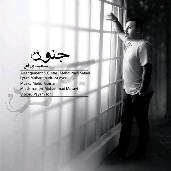Saeed Vaghefi - Jonoon