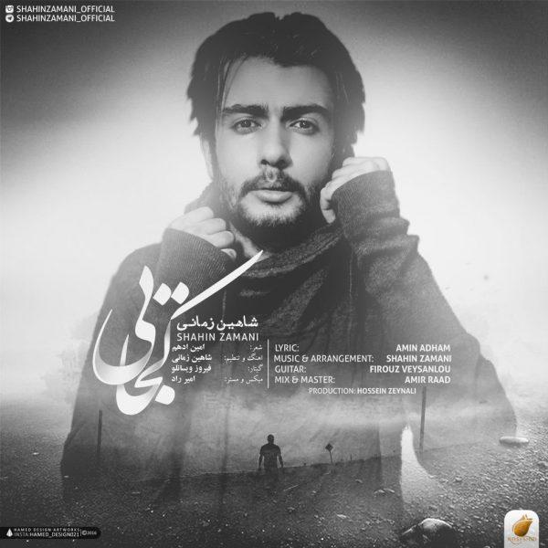 Shahin Zamani - Kojaei
