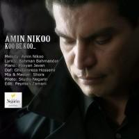 Amin-Nikoo-Koo-Be-Koo
