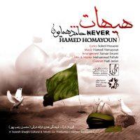 Hamed-Homayoun-Heyhat