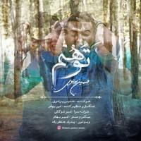 Hossein-Partovi-Tavahom