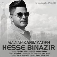 Maziar-Karimzadeh-Hesse-Binazir