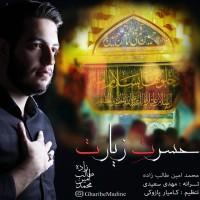 Mohammad-Amin-Talebzadeh-Hasrate-Ziarat
