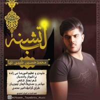 Mohammad-Hosein-Tayebi-Nia-Labe-Teshneh