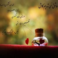 Mohammad-Saeed-Lashgari-Ashegh-Nemishodim-Kash