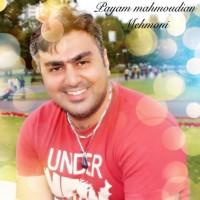 Payam-Mahmoudian-Mehmoni