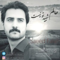 Saeed-Falah-Halam-Shabihe-To-Nist