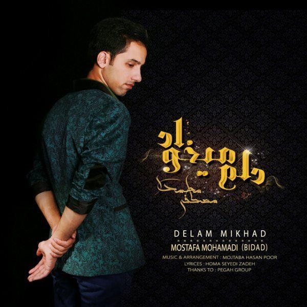Mostafa Mohamadi (Bidad) - Delam Mikhad