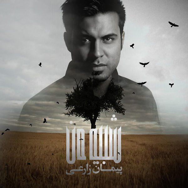 Peyman Zarei - Aroomam (Ft. Farzan Hasanvand)