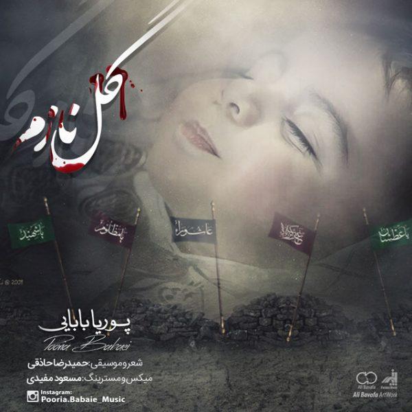 Pourya Babaei - Gole Nazam