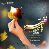 Ali-Rajabi-Dokhtare-Paeeiz