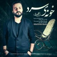 Amin-Mahmoudi-Khooneye-Sard