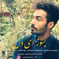 Amir-Abbas-Keshavarz-Besooz-Ey-Del