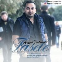 Hamed-Zeidabadi-Fasele