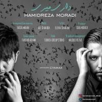 Hamid-Reza-Moradi-Dari-Miri