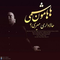 Hamoon-Hashemi-Hala-Dari-Miri