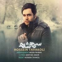 Hossein-Tavakoli-Sardam-Shodeh