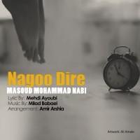 Masoud-Mohammad-Nabi-Nagoo-Dire