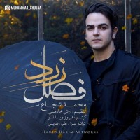 Mohammad-Shojaa-Fasle-Zard