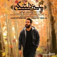 MohammadHossein-Mahdi-Paeeze-Deltangi