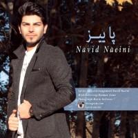 Navid-Naeini-Paeiz