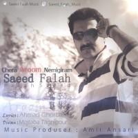Saeed-Falah-Chera-Aroom-Nemigiram